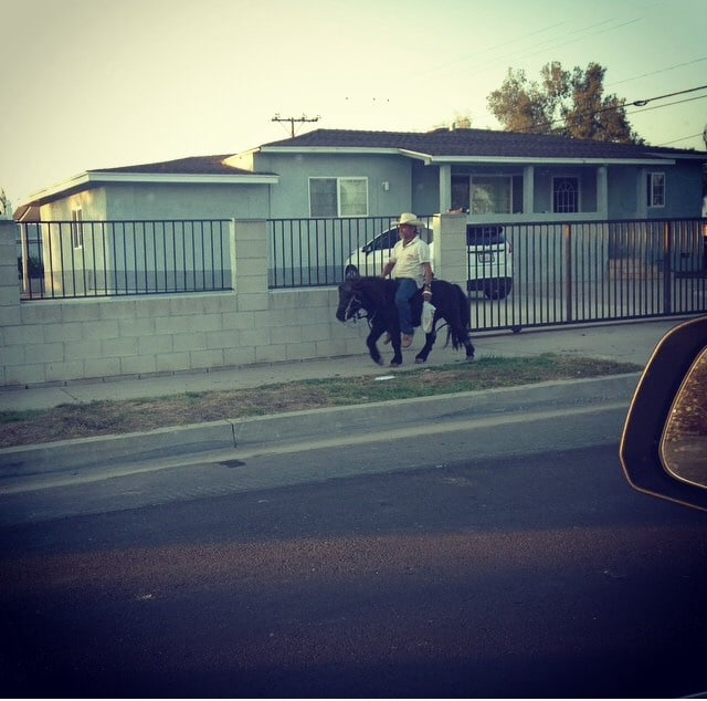 Only In LA: Mexican on a Pony