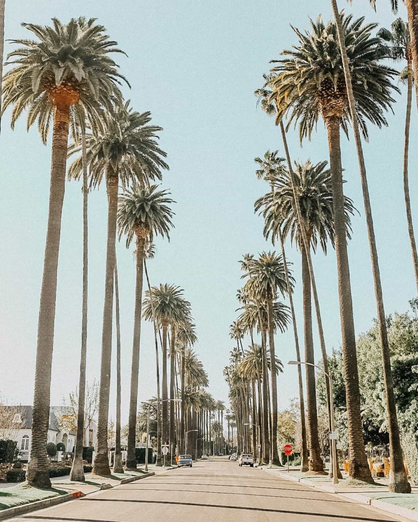 HOW TO HAVE A GREAT DAY IN BEVERLY HILLS – THAT DOESN'T INVOLVE RODEO DRIVE