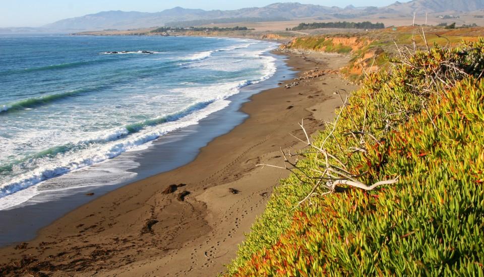 Moonstone-Beach-960x550