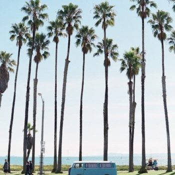Santa Monica. Palm Trees. & A Good Ol' Fashioned VW Bus.