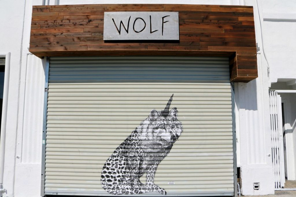Love and Loathing LA Wolf