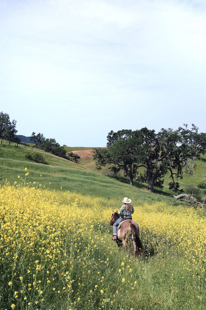 Love and Loathing LA Alisal Ranch