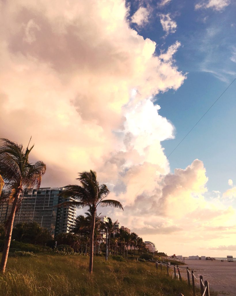 Love and Loathing LA Miami Swimweek