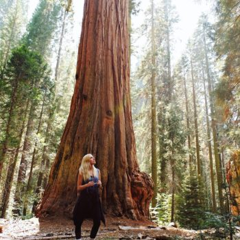 QUICK-TRIP GUIDE TO SEQUOIA NATIONAL PARK