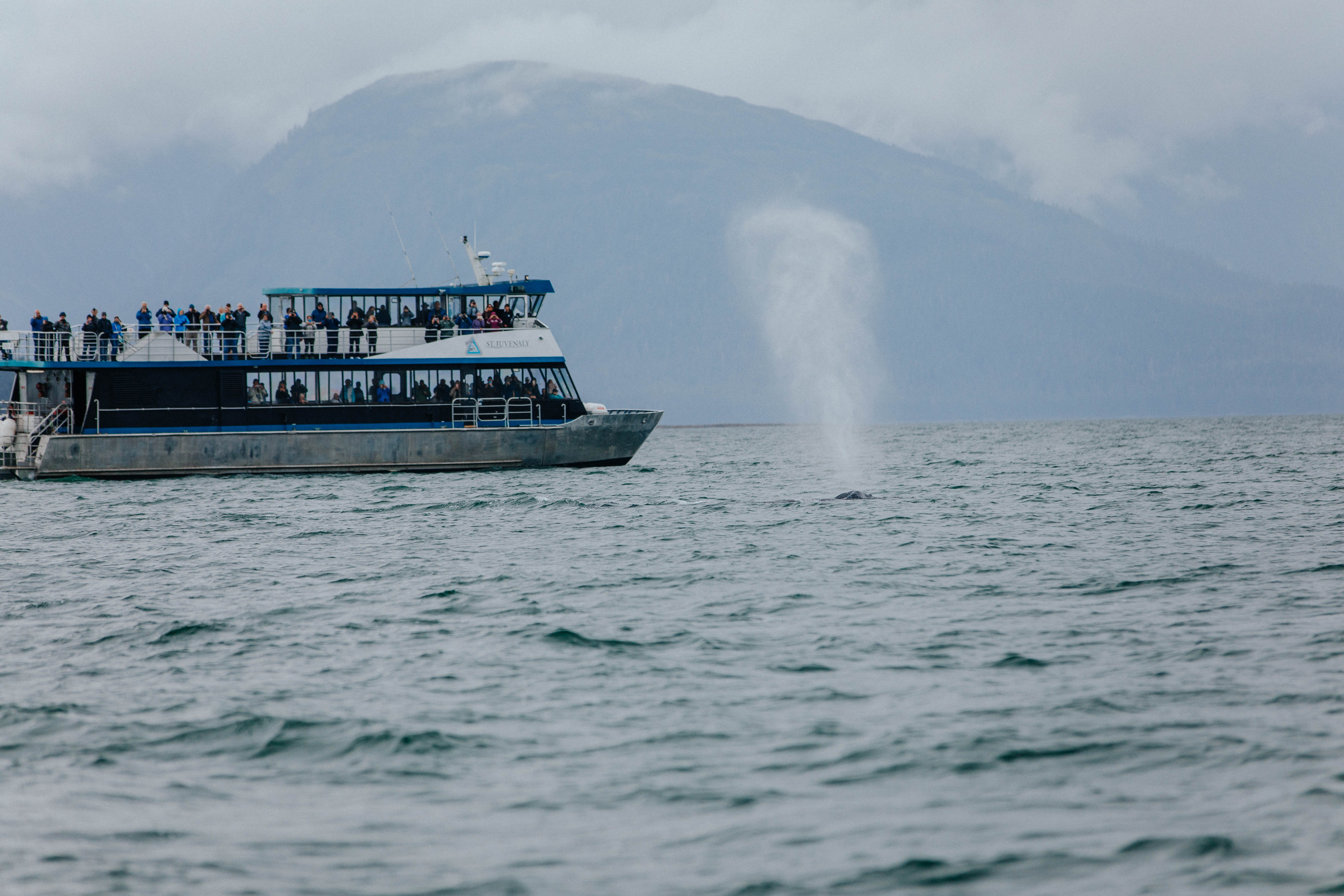 Alaskan photo diary   boat ride