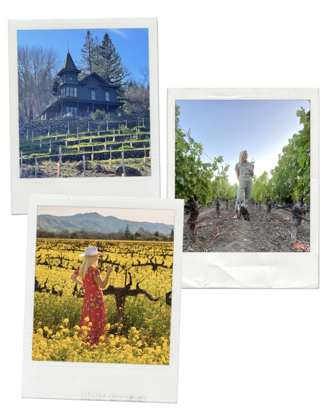 Getaway Guide to Napa Valley
